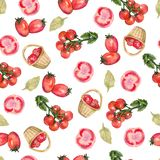 Watercolor hand drawn seamless pattern with red tomato in a wicker basket, cut tomato, cherry tomatoes on the white background royalty free illustration