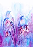 Watercolor draw of snowdrops in lilac tones. Watercolor hand drawn spring greeting card in lilac tones with first flowers - beautiful snowdrops Stock Photography