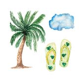 Watercolor hand drawn summer beach set. Palm tree,flip-flops, cloud isolated on white. Background stock illustration