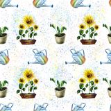 Watercolor hand drawn sunflower garden seamless pattern stock images