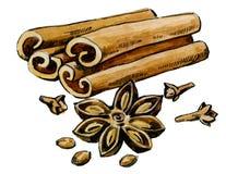 Watercolor hand drawn vanilla Royalty Free Stock Images