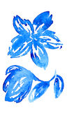 Watercolor hand drawn vector flower with leaves. Royalty Free Stock Photography