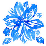 Watercolor hand drawn vector flower with leaves. Royalty Free Stock Photos
