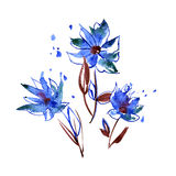 Watercolor hand painted abstract flowers Royalty Free Stock Photography