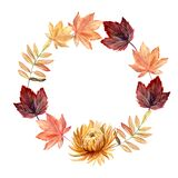 Watercolor hand painted autumn wreath with autumn leaves and chrysanthemum flower.