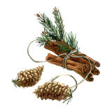 Watercolor hand painted Christmas illustration with cinnamon. Fir branches, fir cones.nInvitation, greeting card. n stock illustration