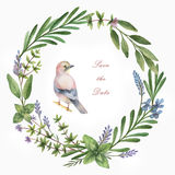 Watercolor hand painted circle frame with herbs, spices and bird. Stock Photos