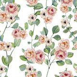 Watercolor hand painted eucalyptus and flowers seamless pattern . Greenery branches and leaves isolated on white background. Flor