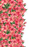 Watercolor hand-painted floral banner in tropical style Stock Photography