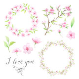 Watercolor hand painted floral wreath Royalty Free Stock Images