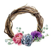 Watercolor hand painted floral wreath of twig. Wood wreath with baby eucalyptus, silver dollar eucalyptus branch, peony, anemone f Stock Photos