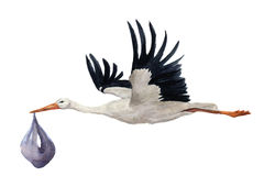 Watercolor hand painted flying white stork with boy baby. Hand painted ciconia bird illustration isolated on white background. For Stock Photos