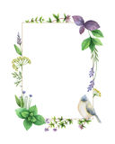 Watercolor hand painted frame with herbs and spices. Stock Photo