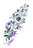 Watercolor hand painted illustration with bells isolated on whit. E background in gentle tone. Floral birthday card royalty free illustration