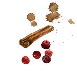Watercolor hand painted illustration with cinnamon and cranberry. NInvitation, greeting card. n stock illustration