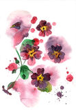 Watercolor hand painted illustration. With purple petunia on multicolor background. Floral birthday card stock illustration