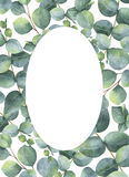 Watercolor hand painted oval wreath with silver dollar eucalyptus. Stock Photo