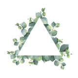 Watercolor hand painted oval wreath with silver dollar eucalyptus. Royalty Free Stock Image