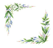 Watercolor hand painted rectangular wreaths with herbs and spices. Stock Image