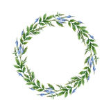 Watercolor hand painted round wreath with Blue vervain. Stock Image