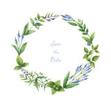 Watercolor hand painted round wreath with herbs and spices. Stock Images