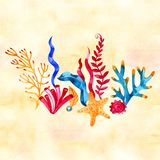 Watercolor hand painted sea composition. Nautical background with vintage realistic elements. stock illustration