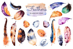 Watercolor hand painted set with 19 elements Stock Images