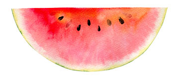 Watercolor hand painted slice of watermelon stock illustration