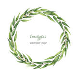 Watercolor hand painted vector round wreath with eucalyptus leaves and branches. Healing Herbs for cards, wedding invitation, posters, save the date or stock illustration