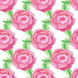 Watercolor handdrawn rose flowers vector seamless Stock Images