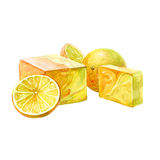 Watercolor handmade bath soap with fruits and herbal. Isolated on white background stock illustration
