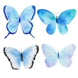 Watercolor handmade butterfly collection pattern. Can be used for greeting cards, invitations,logo,printing on fabric. Royalty Free Stock Photo