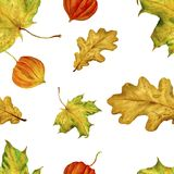 Watercolor handmade leaves. Pattern is seamless with autumn leaves. For your design of the fabric, wrapping paper, etc. Royalty Free Stock Photography