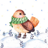 Watercolor handpainted illustration with a cute bird royalty free illustration