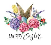 Watercolor Happy easter floral and rabbit ears card. Holiday illustration with hyarangea, eggs, lavender, tulip and dog. Rose isolated on white background royalty free stock photos