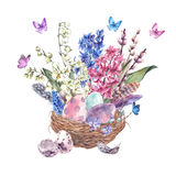 Watercolor Happy Easter greeting card, spring flowers bouquet an. Watercolor  Happy Easter greeting card, spring flowers bouquet and colored eggs in the nest Stock Image