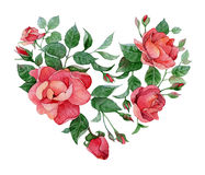 Watercolor heart. Watercolor floral abstract heart of roses vector illustration