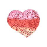 Watercolor heart with capillaries Royalty Free Stock Image