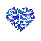 Watercolor heart filled with bright transparent butterflies of blue shades. Stock Photos