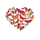 Watercolor heart filled with bright transparent butterflies of red, orange, ocher shade. Watercolor heart filled with bright transparent butterflies of red Royalty Free Stock Photography