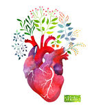 Watercolor heart with spring leafs and flowers. Spring or summer design Royalty Free Stock Photos