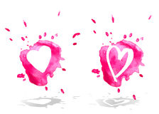 Watercolor hearts. Two watercolor hearts. Vector illustration Stock Photo