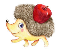 Watercolor hedgehog Royalty Free Stock Photos