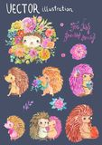 Watercolor hedgehog illustration. Cute collection over white Royalty Free Stock Images