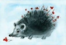 Watercolor hedgehog. Royalty Free Stock Photos