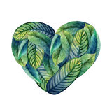 Watercolor heliconia heart Royalty Free Stock Image