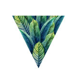 Watercolor heliconia leaves Stock Photo