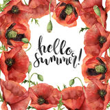 Watercolor Hello summer card. Hand painted floral border with poppy flowers, leaves, seed capsule and branches isolated. On white background. For design, print Royalty Free Stock Images