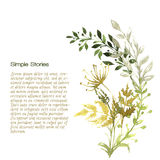Watercolor herbs and flowers, background Stock Photos