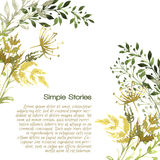 Watercolor herbs and flowers, background. Hand drawn Royalty Free Stock Image